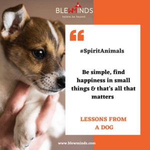Read more about the article Life Lessons from Dog – Spirit Animals Campaign